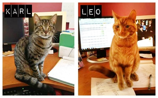 carl&leo3