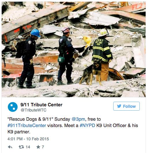 rescue dogs WTC